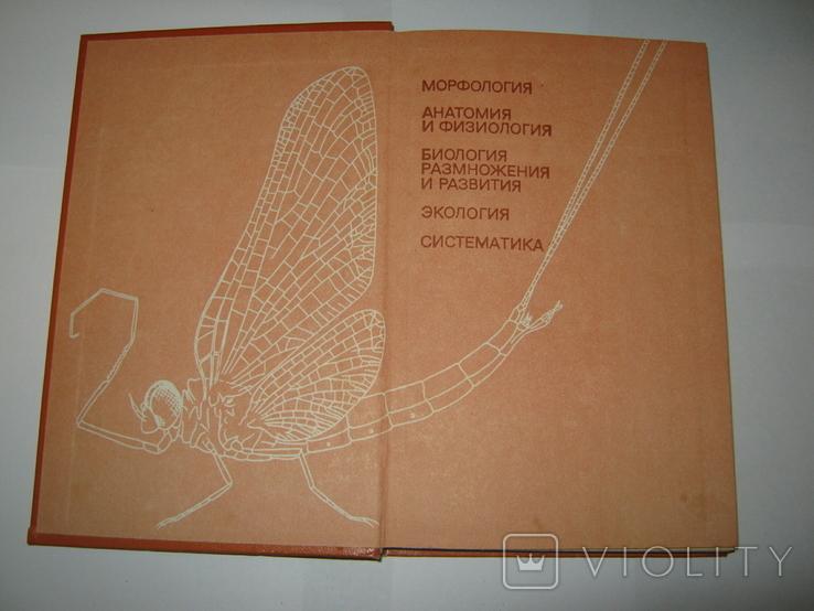 """Ю. А. Захваткин, """"Курс общей энтомологии"""", 1986 г., фото №3"""