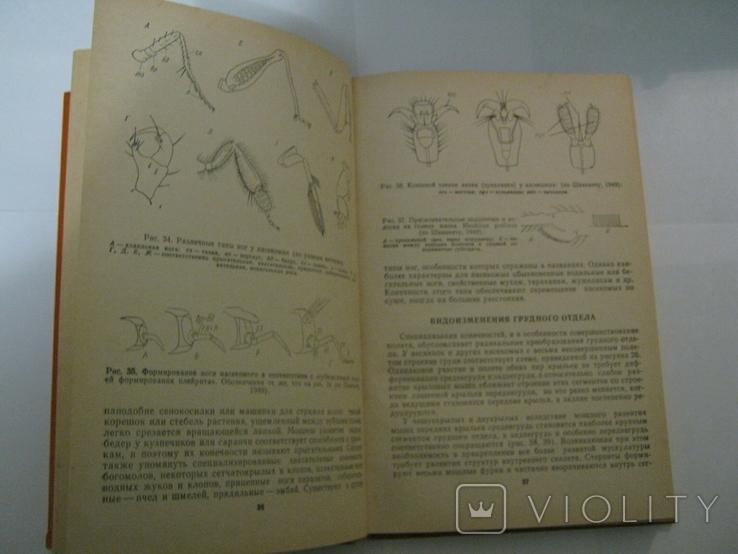 """Ю. А. Захваткин, """"Курс общей энтомологии"""", 1986 г., фото №8"""