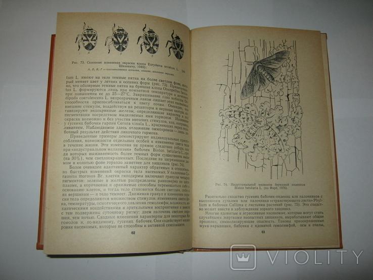 """Ю. А. Захваткин, """"Курс общей энтомологии"""", 1986 г., фото №11"""