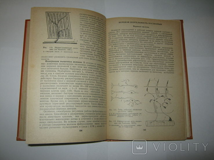 """Ю. А. Захваткин, """"Курс общей энтомологии"""", 1986 г., фото №13"""