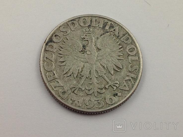 2 злотых 1936, 15 лет морскому порту Гдыня, серебро, фото №3