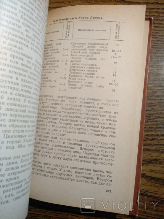 Растения в быту М.Рева 1982, фото №4