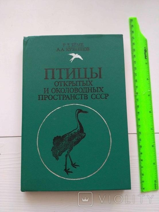 Птицы открытых и околоводных пространств ссср, фото №2