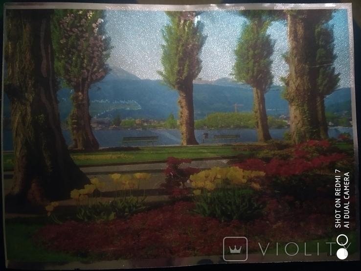 Ресунак деревя и рамашки зделоны руками, фото №2