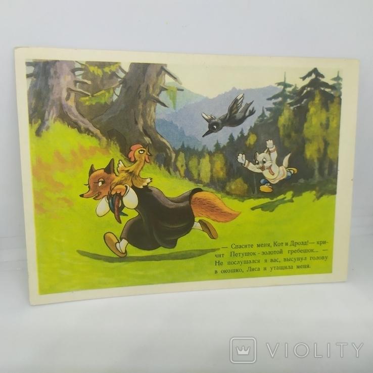 Открытка 1955 Сказка Кот, дрозд и петух. чистая, фото №2