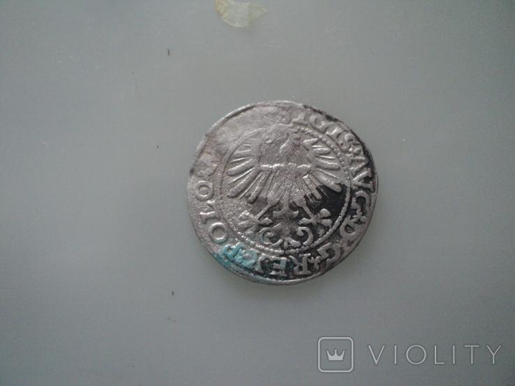 Полугрош 1563, фото №7