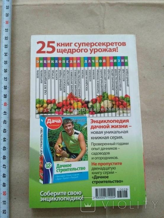 Домашние заготовки Фрукты и ягоды, фото №4