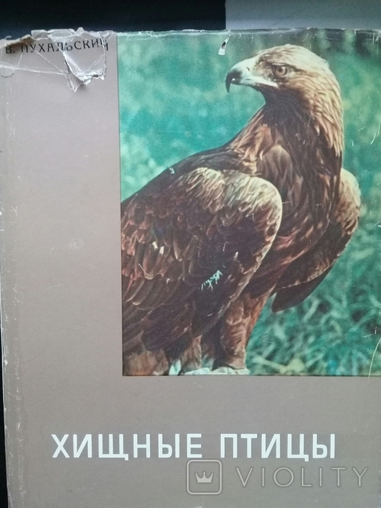 """""""Хищные птицы"""" Влодзимеж Пухальский. Варшава 1978 г., фото №2"""