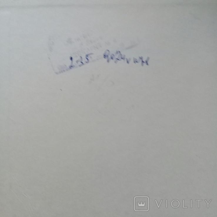 """""""Хищные птицы"""" Влодзимеж Пухальский. Варшава 1978 г., фото №12"""