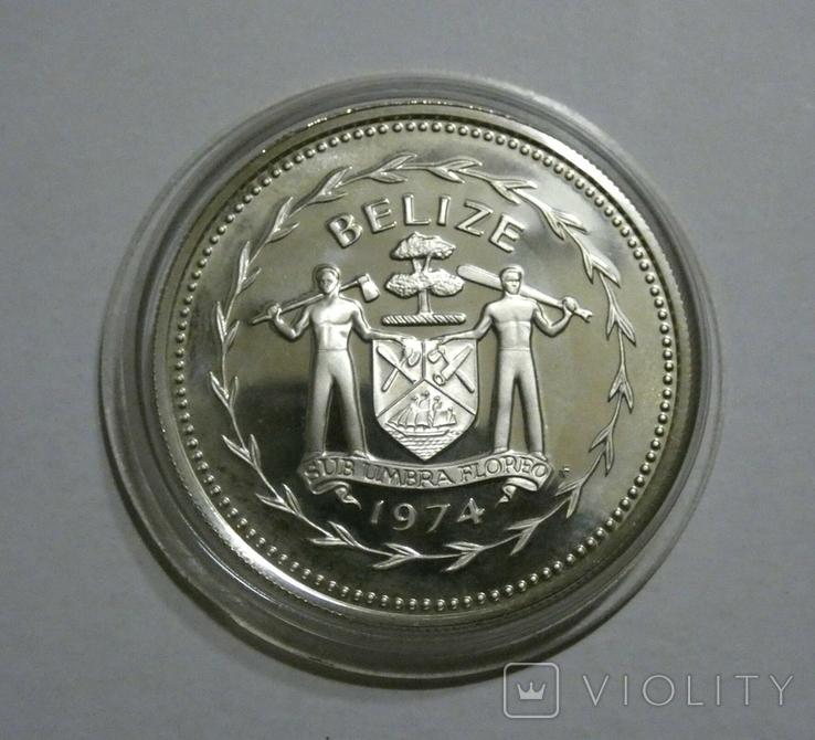 Белиз 5 долларов 1974 - Птицы - серебро, фото №3