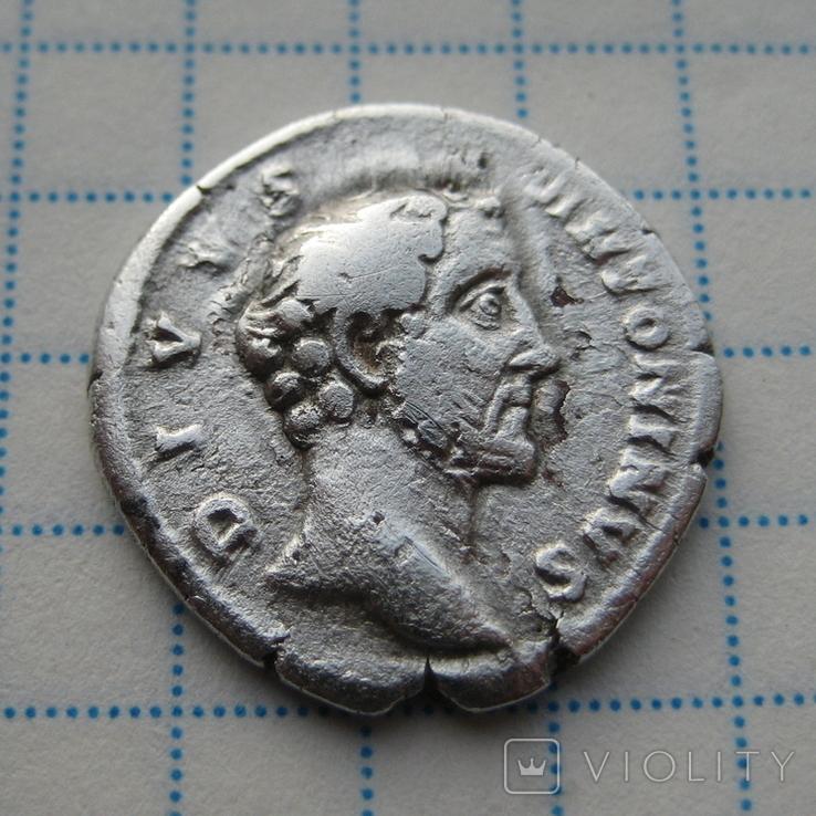 Денарий, Антоний Пий (посмертный), фото №2