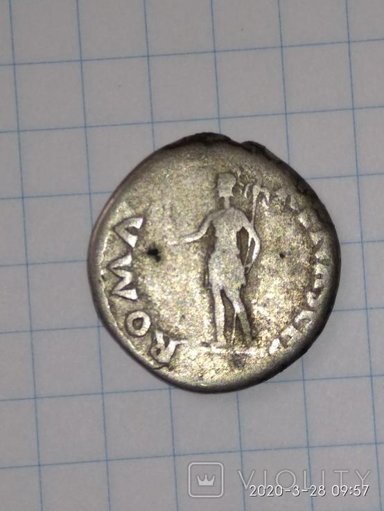 Денарій Гальби (ROMA), фото №8