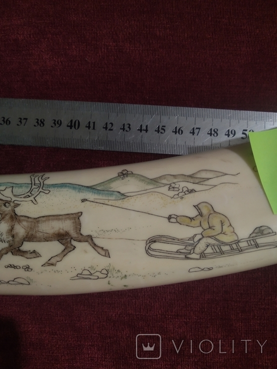 Бивень моржа (58 см, ~1.5 кг), фото №10