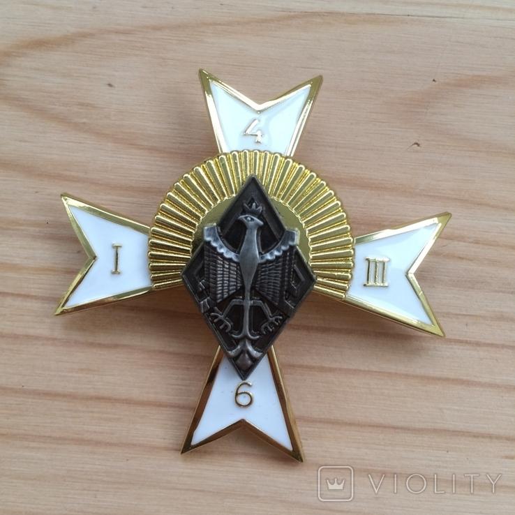 Знак 6 полк конных стрелков Польша Копия, фото №3