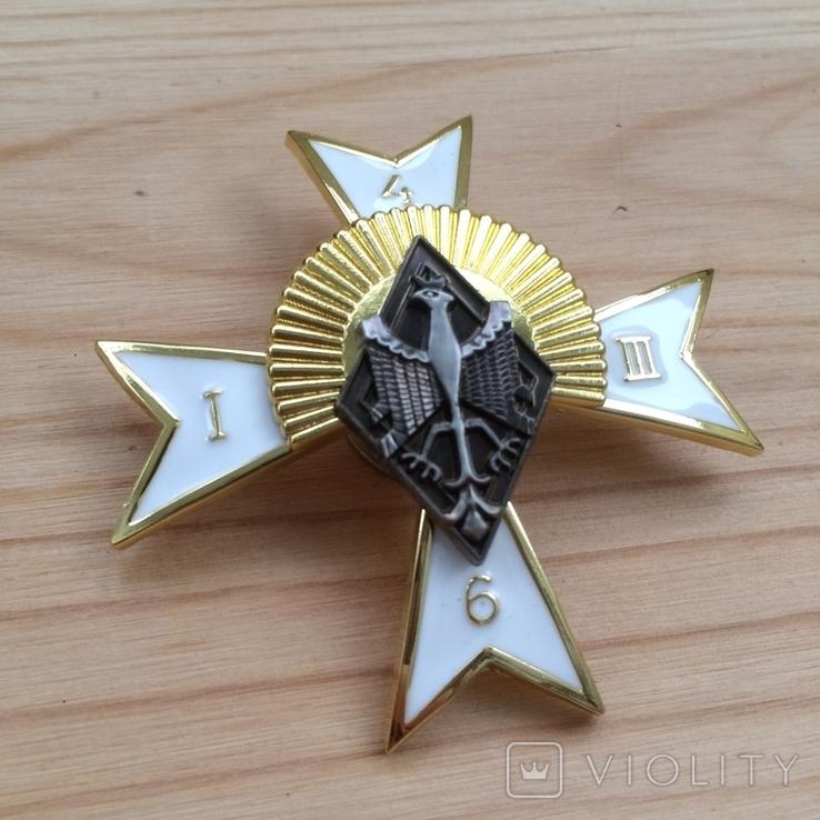 Знак 6 полк конных стрелков Польша Копия, фото №2