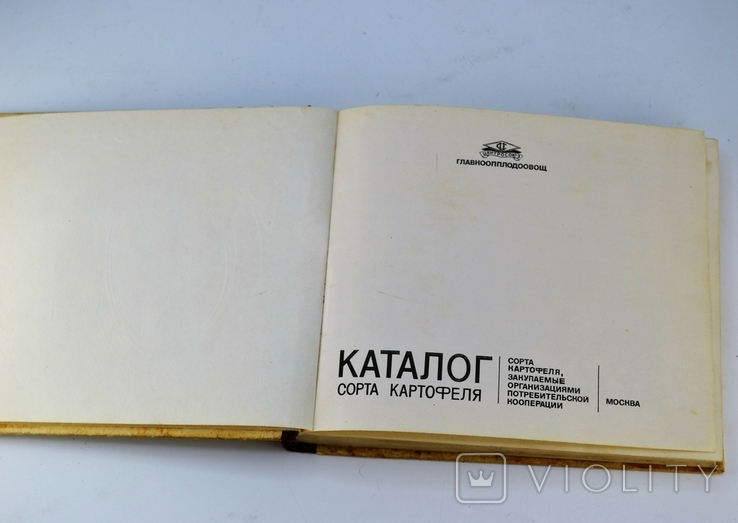 Каталог Сорта Картофеля, фото №4