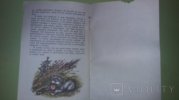 Толстой Лев и собачка, фото №4