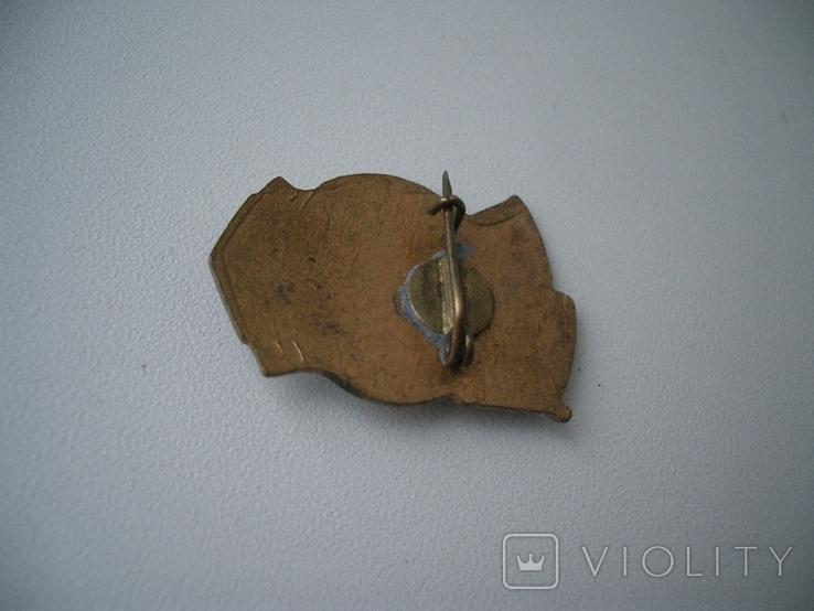 Значок республиканский СССР чемпион гандбол бронза, фото №5