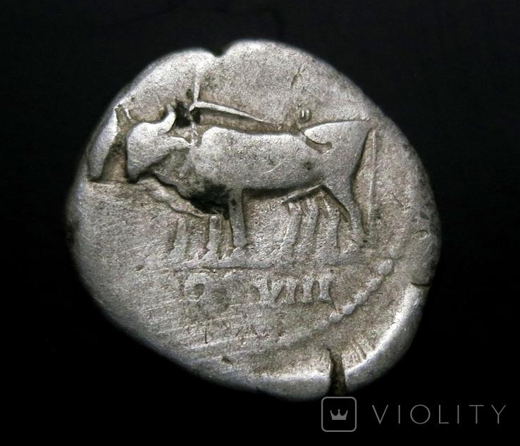 Денарий имп. Веспасиан, фото №2