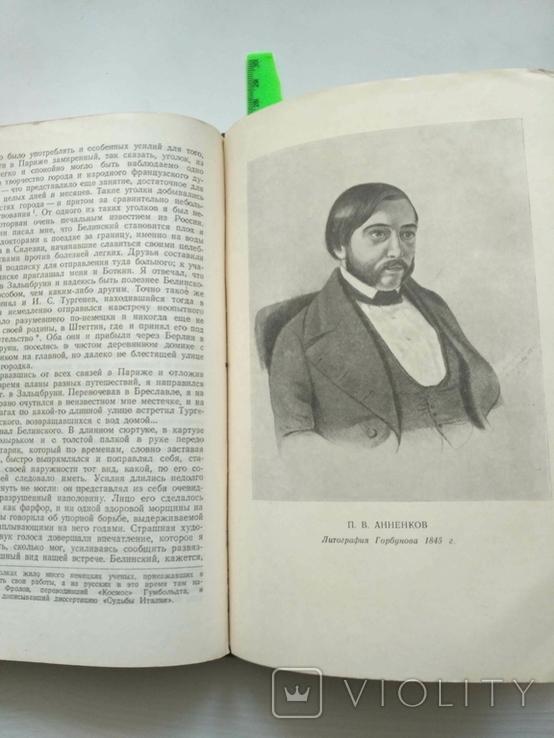 Белинский в воспоминаниях современников, фото №6
