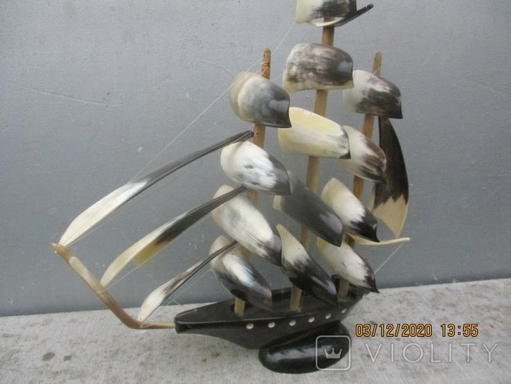 Парусник из рога (690гр.), фото №7