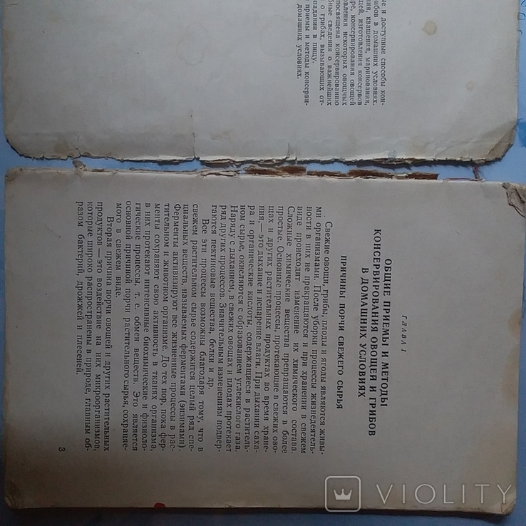 Консервирование овощей и гробов в домашних условиях 1961р., фото №5