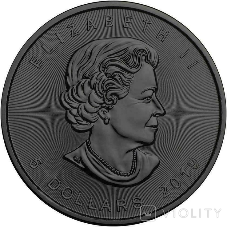 Канада 5 долларов 2019 год. Паук 3Д. 1 унция серебра 999 пробы, фото №4
