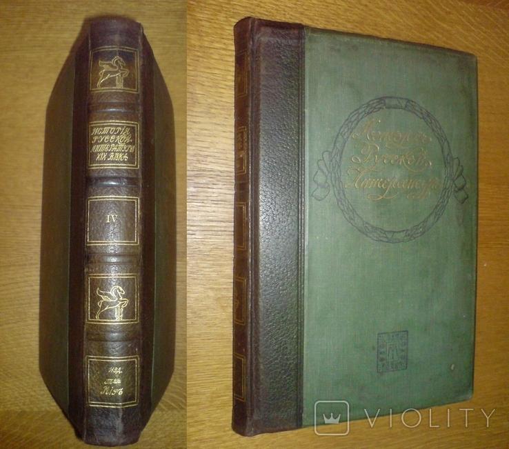 История Русской Литературы 19 века 1910 г., фото №2