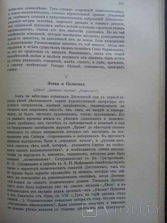 История Русской Литературы 19 века 1910 г., фото №7