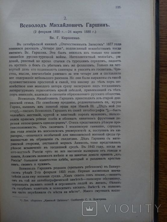 История Русской Литературы 19 века 1910 г., фото №8