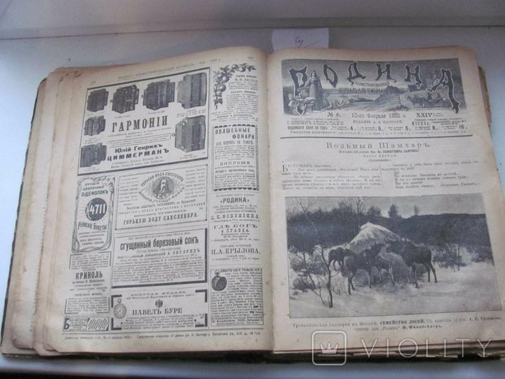 Родина. Комплект за полгода 1902 год. №№ 1 - 26., фото №10