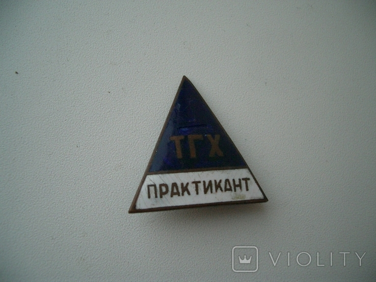 "Знак""Практикант ТХГ"" контррельефный 28х29 мм, фото №2"