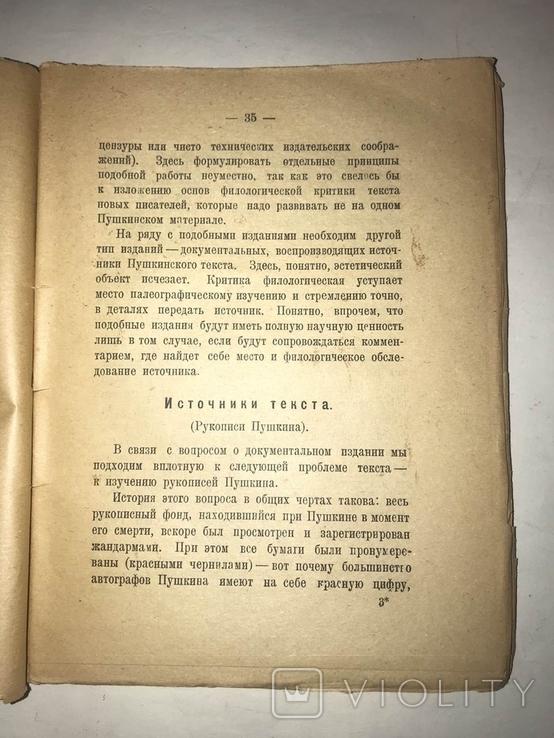 1925 Пушкин Б. Томашевский, фото №4