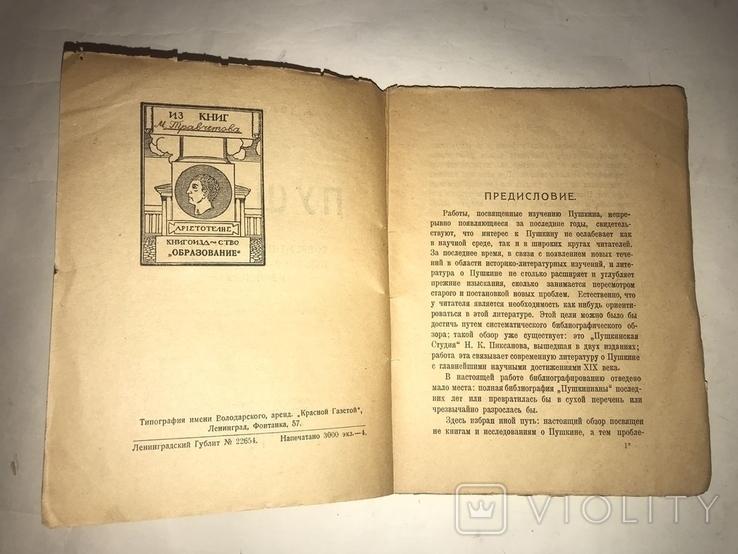 1925 Пушкин Б. Томашевский, фото №6