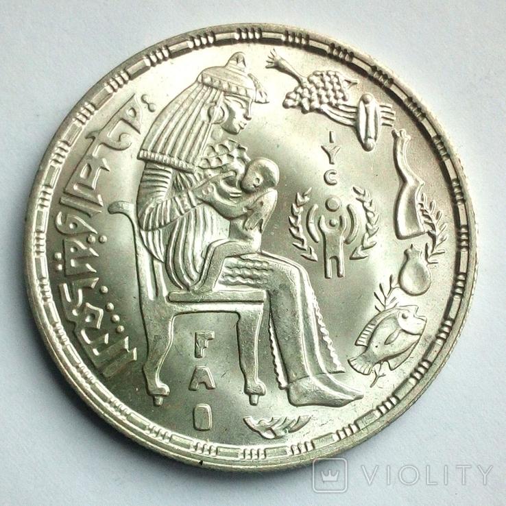 Египет 1 фунт 1979 г. - Питание и здоровье, фото №2