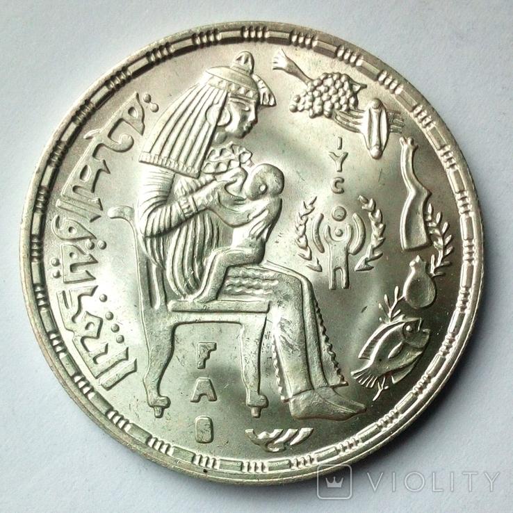 Египет 1 фунт 1979 г. - Питание и здоровье, фото №4