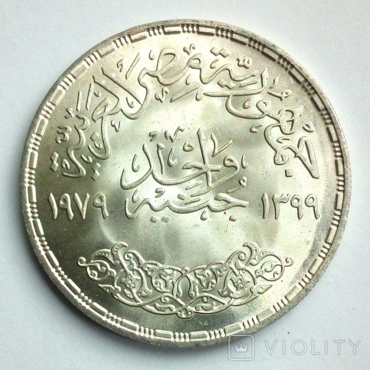 Египет 1 фунт 1979 г. - Питание и здоровье, фото №5
