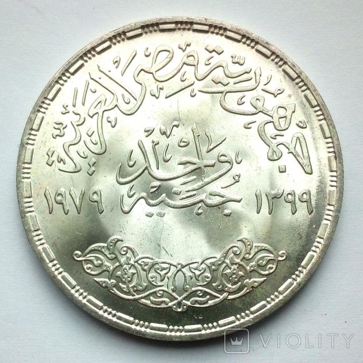 Египет 1 фунт 1979 г. - Питание и здоровье, фото №6