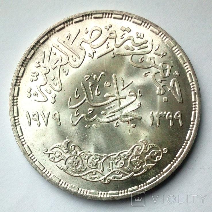 Египет 1 фунт 1979 г. - Питание и здоровье, фото №7