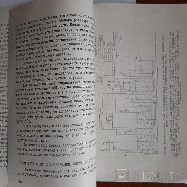 Выращивание кормовых дрождей 1964р., фото №4