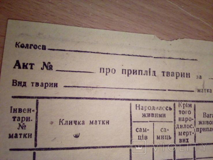 Акт про приплід тварин ( бланк), изд, Полт обл. друк.  1947, фото №6