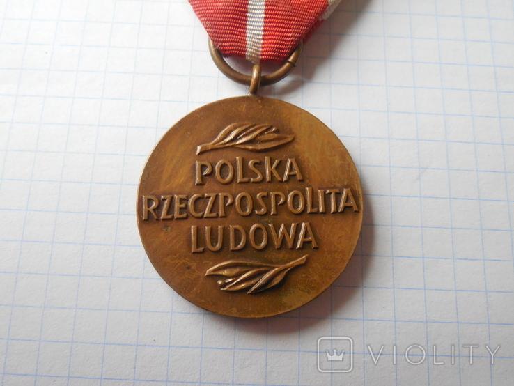 Медаль Национальной комиссии по образованию, Польша, фото №6