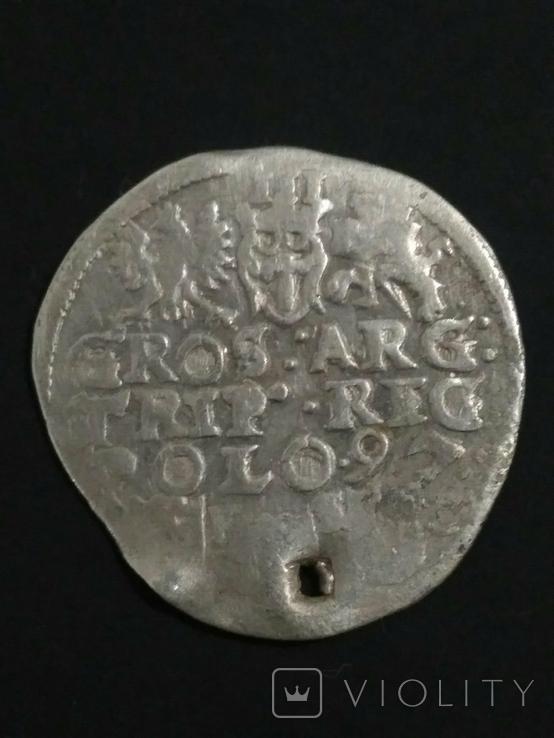 Две монеты Сигизмунда lll, фото №3