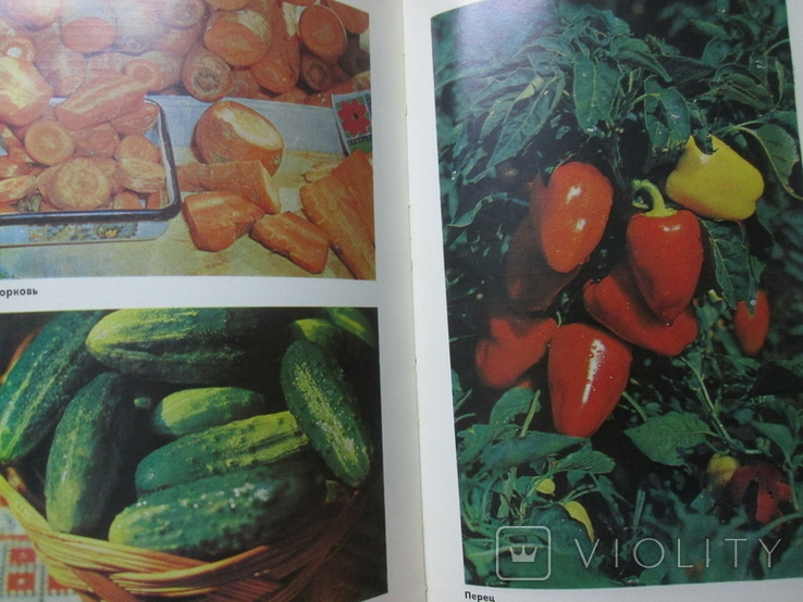 Настольная книга по домашнему консервированию, фото №7