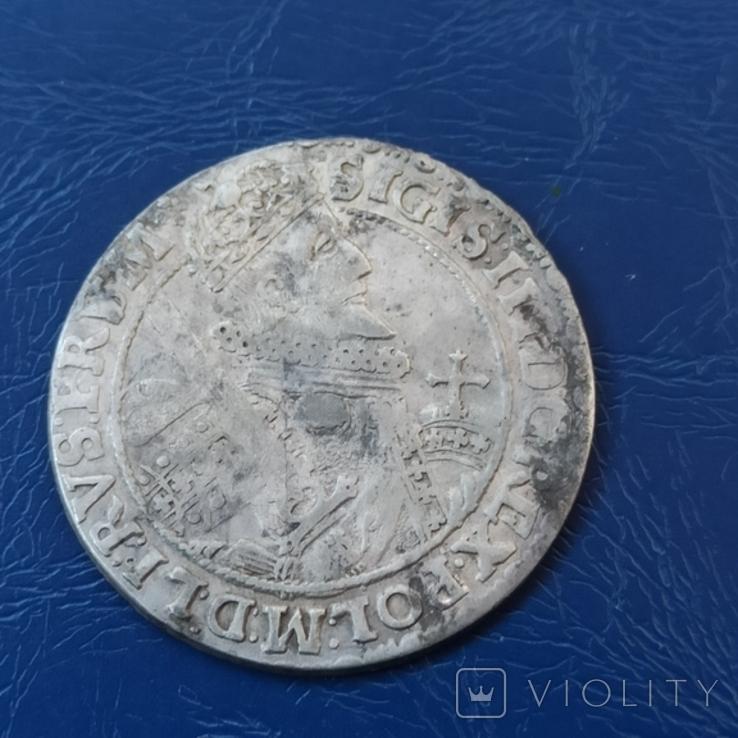 Орт 1621 г. Цифра 1 на поле. Сигизмунд, фото №6