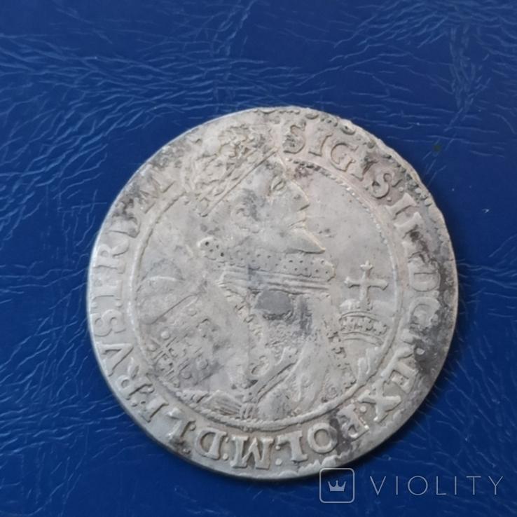 Орт 1621 г. Цифра 1 на поле. Сигизмунд, фото №7