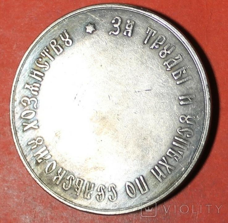 Костромское губернское земство (копия медали), фото №3