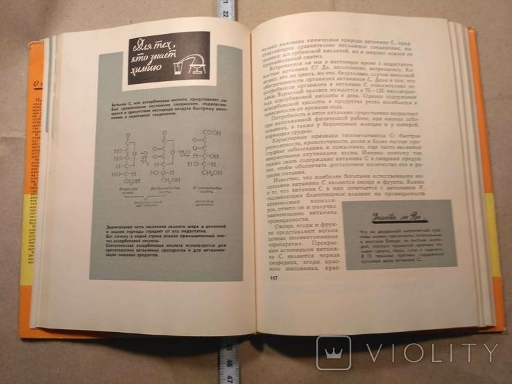 Беседы о питании А.А.Покровский 1964 р, фото №8