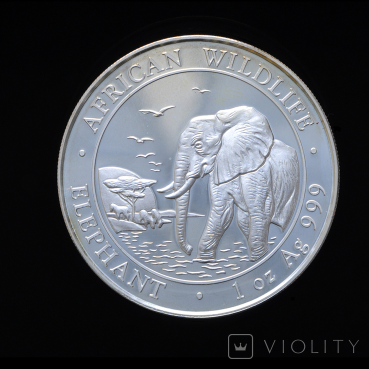100 Шиллингов 2010 1oz , Сомали Унция, фото №2