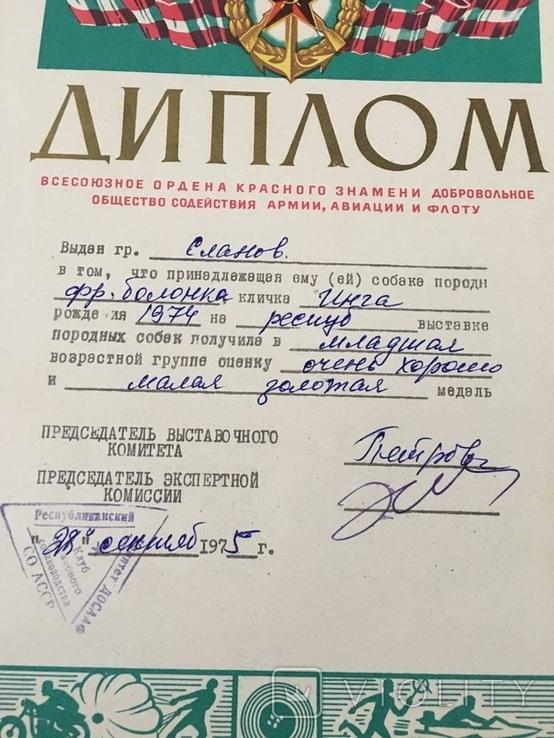 Диплом 1975г выдан хозяину собаки на выставке СССР, фото №3